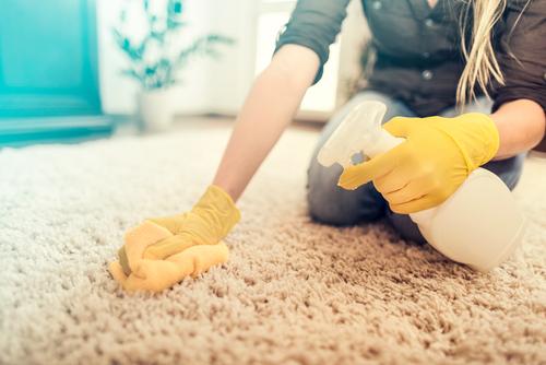Brno čištění koberců